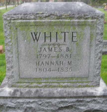 WHITE, HANNAH M. - Montgomery County, Ohio | HANNAH M. WHITE - Ohio Gravestone Photos