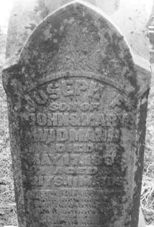WIDMANN, JOSEPH F. - Montgomery County, Ohio   JOSEPH F. WIDMANN - Ohio Gravestone Photos
