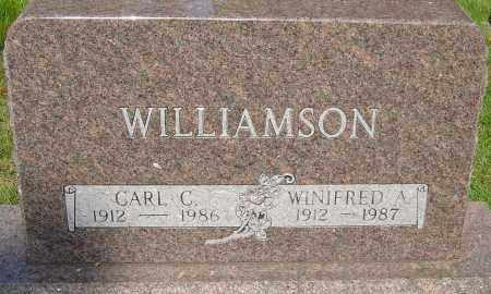 WILLIAMSON, CARL CAMPBELL - Montgomery County, Ohio | CARL CAMPBELL WILLIAMSON - Ohio Gravestone Photos