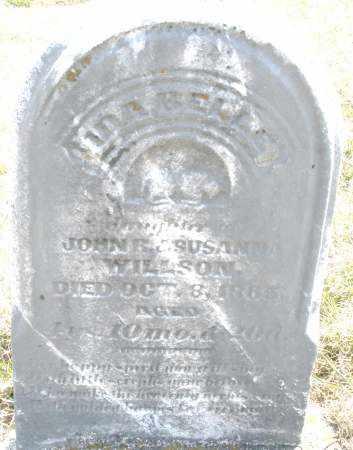 WILLSON, IDA BELLE - Montgomery County, Ohio | IDA BELLE WILLSON - Ohio Gravestone Photos