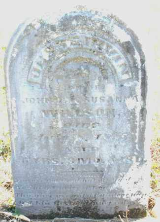 WILLSON, JESSE IRVIN - Montgomery County, Ohio | JESSE IRVIN WILLSON - Ohio Gravestone Photos