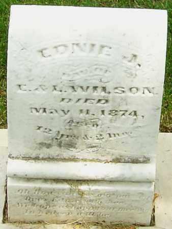 WILSON, EDNIE J - Montgomery County, Ohio | EDNIE J WILSON - Ohio Gravestone Photos