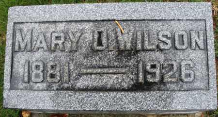WILSON, MARY - Montgomery County, Ohio | MARY WILSON - Ohio Gravestone Photos