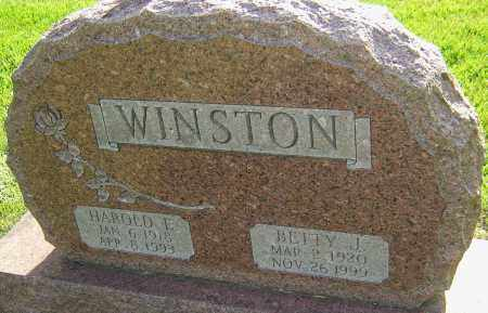 WINSTON, BETTY J - Montgomery County, Ohio | BETTY J WINSTON - Ohio Gravestone Photos