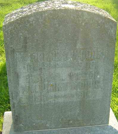 WOODS, WILLIAM PERRY - Montgomery County, Ohio | WILLIAM PERRY WOODS - Ohio Gravestone Photos
