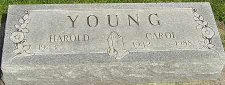 YOUNG, CAROL - Montgomery County, Ohio | CAROL YOUNG - Ohio Gravestone Photos