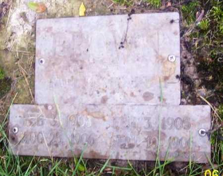 EARL, BROWN - Morgan County, Ohio | BROWN EARL - Ohio Gravestone Photos