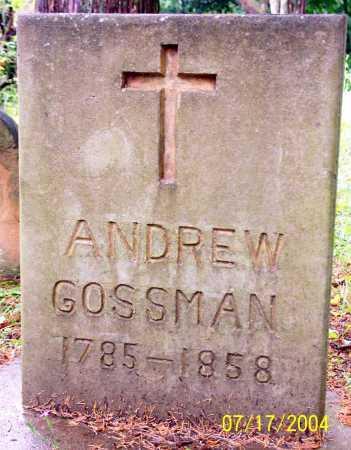 GOSSMAN, ANDREW - Morgan County, Ohio | ANDREW GOSSMAN - Ohio Gravestone Photos