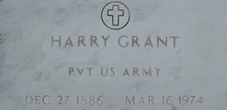 GRANT, HARRY - Morgan County, Ohio | HARRY GRANT - Ohio Gravestone Photos