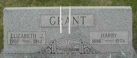 GRANT, HARRY SR - Morgan County, Ohio | HARRY SR GRANT - Ohio Gravestone Photos