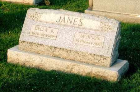 JANES, DELLA - Morgan County, Ohio | DELLA JANES - Ohio Gravestone Photos
