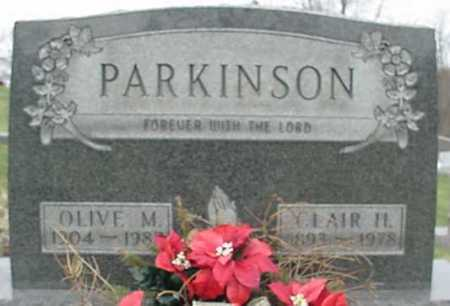 PARKINSON, OLIVE MAY - Morgan County, Ohio | OLIVE MAY PARKINSON - Ohio Gravestone Photos