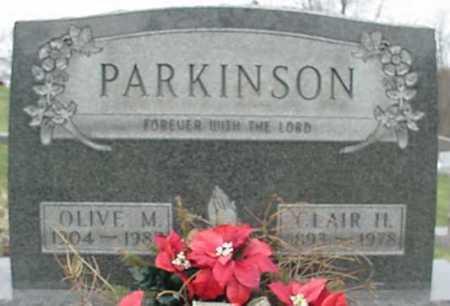 PARKINSON, OLIVE MAY - Morgan County, Ohio   OLIVE MAY PARKINSON - Ohio Gravestone Photos