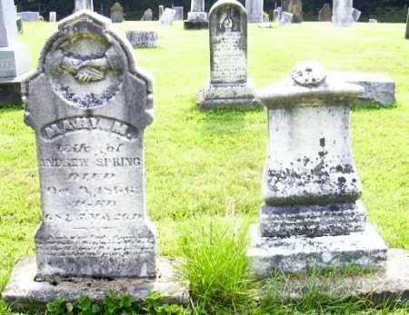 SPRING, ANDREW - Morgan County, Ohio | ANDREW SPRING - Ohio Gravestone Photos