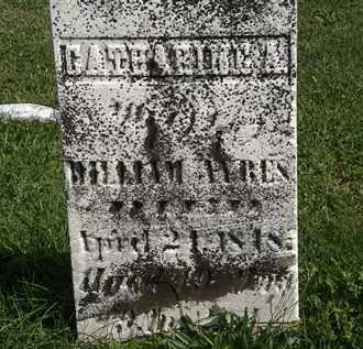 AYRES, WILLIAM - Morrow County, Ohio | WILLIAM AYRES - Ohio Gravestone Photos