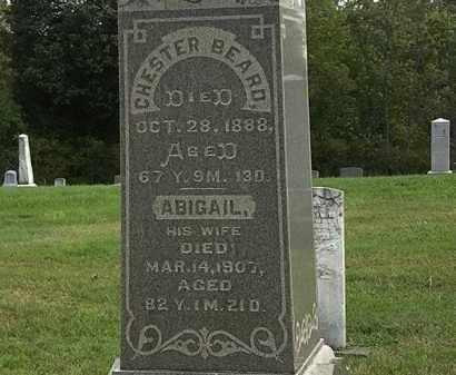 BEARD, CHESTER - Morrow County, Ohio | CHESTER BEARD - Ohio Gravestone Photos