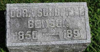 BENSON, DORA - Morrow County, Ohio | DORA BENSON - Ohio Gravestone Photos