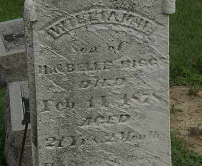 BIGGS, WILLIAM H. - Morrow County, Ohio | WILLIAM H. BIGGS - Ohio Gravestone Photos
