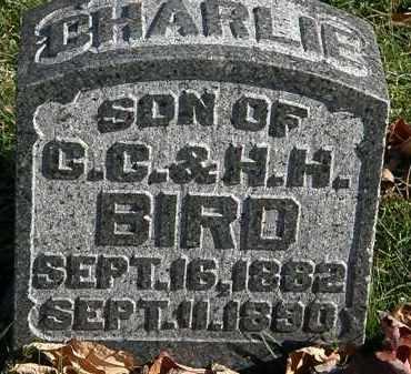 BIRD, CHARLIE - Morrow County, Ohio | CHARLIE BIRD - Ohio Gravestone Photos