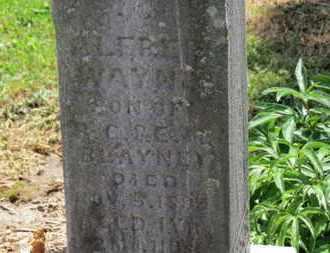 BLAYNEY, E. - Morrow County, Ohio | E. BLAYNEY - Ohio Gravestone Photos