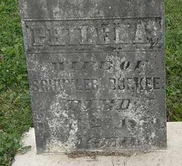 BURKEE, PHILENA - Morrow County, Ohio | PHILENA BURKEE - Ohio Gravestone Photos