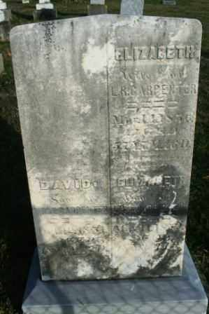 CARPENTER, DAVID - Morrow County, Ohio | DAVID CARPENTER - Ohio Gravestone Photos