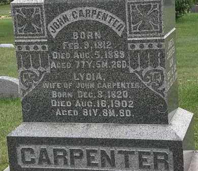CARPENTER, LYDIA - Morrow County, Ohio | LYDIA CARPENTER - Ohio Gravestone Photos