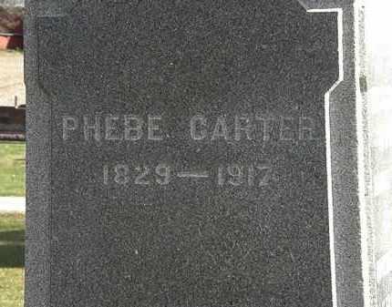CARTER, PHEBE - Morrow County, Ohio | PHEBE CARTER - Ohio Gravestone Photos