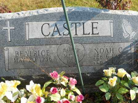 "CASTLE, NOAH C ""DOUG"" - Morrow County, Ohio | NOAH C ""DOUG"" CASTLE - Ohio Gravestone Photos"