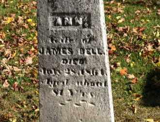 DELL, JAMES - Morrow County, Ohio | JAMES DELL - Ohio Gravestone Photos