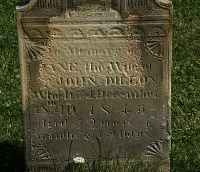 DILLON, JANE - Morrow County, Ohio   JANE DILLON - Ohio Gravestone Photos