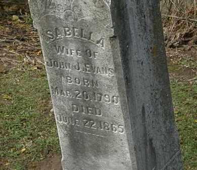 EVANS, ISABELLA - Morrow County, Ohio | ISABELLA EVANS - Ohio Gravestone Photos