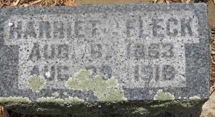 FLECK, HARRIET - Morrow County, Ohio | HARRIET FLECK - Ohio Gravestone Photos