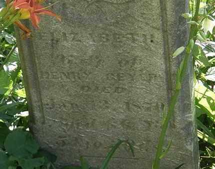 GEYER, HENRY - Morrow County, Ohio | HENRY GEYER - Ohio Gravestone Photos