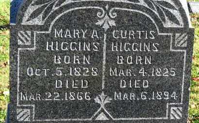 HIGGINS, MARY A. - Morrow County, Ohio | MARY A. HIGGINS - Ohio Gravestone Photos