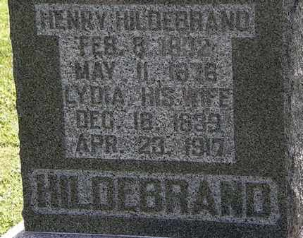 HILDEBRAND, HENRY - Morrow County, Ohio | HENRY HILDEBRAND - Ohio Gravestone Photos
