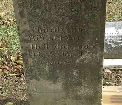 HOLT, CHARITY - Morrow County, Ohio | CHARITY HOLT - Ohio Gravestone Photos