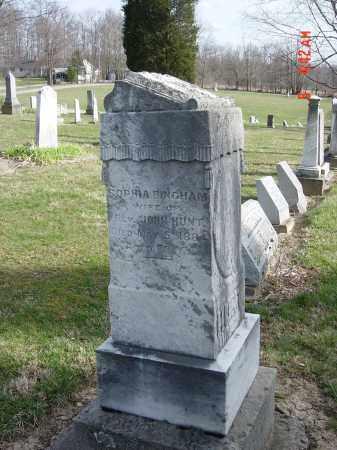 BINGHAM HUNT, SOPHIA - Morrow County, Ohio | SOPHIA BINGHAM HUNT - Ohio Gravestone Photos