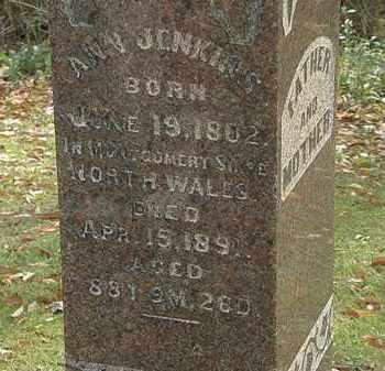 JENKINS, ANN - Morrow County, Ohio | ANN JENKINS - Ohio Gravestone Photos