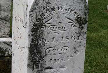 JENKINS, GEORGE W. - Morrow County, Ohio | GEORGE W. JENKINS - Ohio Gravestone Photos