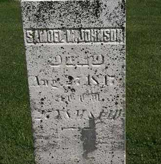 JOHNSON, SAMUEL M. - Morrow County, Ohio | SAMUEL M. JOHNSON - Ohio Gravestone Photos