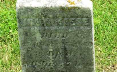 KEESE, JOHN - Morrow County, Ohio | JOHN KEESE - Ohio Gravestone Photos