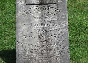 LEWIS, J.W. - Morrow County, Ohio | J.W. LEWIS - Ohio Gravestone Photos
