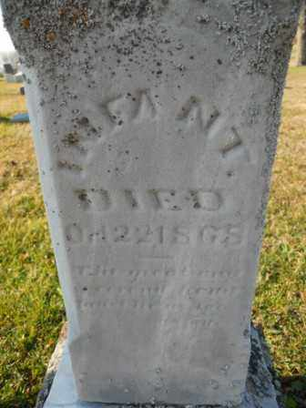 MORTON, INFANT - Morrow County, Ohio | INFANT MORTON - Ohio Gravestone Photos
