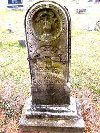 NELLANS, JOHN - Morrow County, Ohio | JOHN NELLANS - Ohio Gravestone Photos