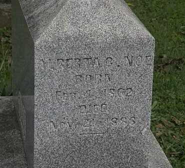 NOE, ALBERTS - Morrow County, Ohio   ALBERTS NOE - Ohio Gravestone Photos
