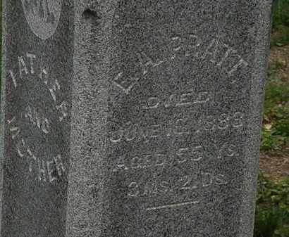 PRATT, E. A. - Morrow County, Ohio | E. A. PRATT - Ohio Gravestone Photos