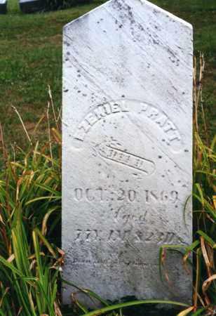PRATT, EZEKIEL - Morrow County, Ohio | EZEKIEL PRATT - Ohio Gravestone Photos