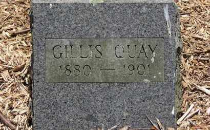 QUAY, GILLIS - Morrow County, Ohio   GILLIS QUAY - Ohio Gravestone Photos