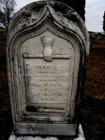 SWANEY, MARY - Morrow County, Ohio   MARY SWANEY - Ohio Gravestone Photos